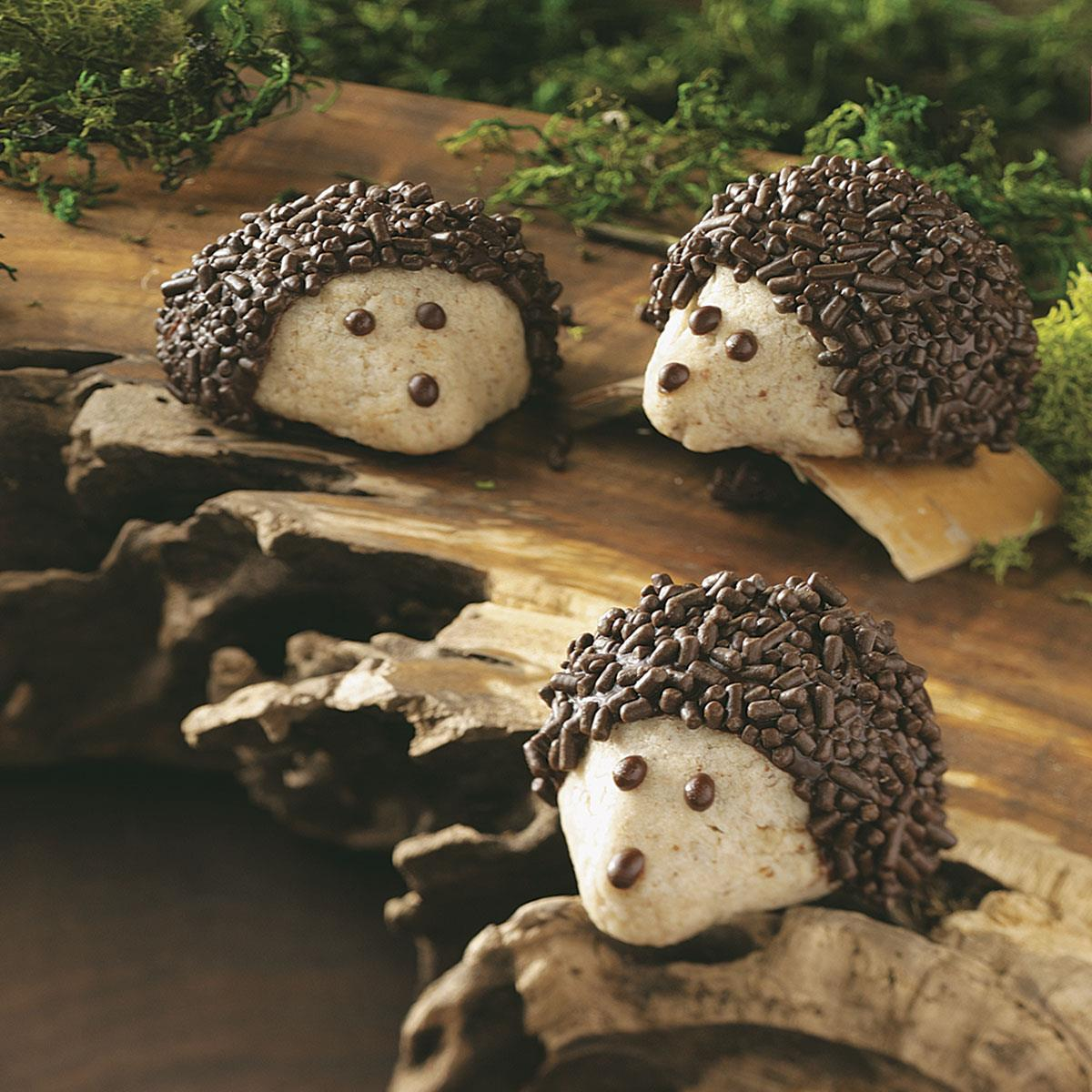 Chocolate Pecan Hedgehog Cookies Recipe Taste Of Home