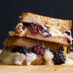 Blackberry Grilled Cheese Sandwich Recipe
