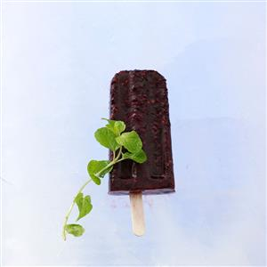 Blackberry Mint Pops Recipe