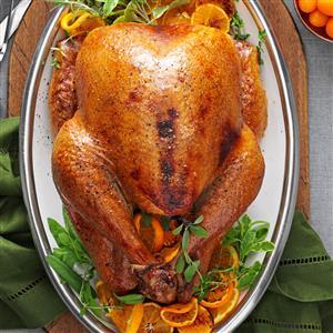 Cranberry-Orange Roasted Turkey Recipe