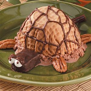 Ice Cream Turtle Recipe