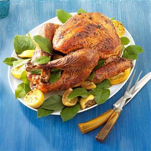 Spice-Rubbed Turkey Recipe