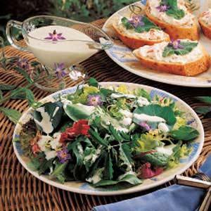 Borage Cucumber Salad Dressing Recipe