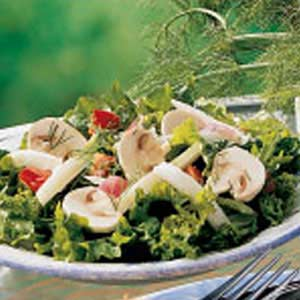 Fennel Green Salad Recipe