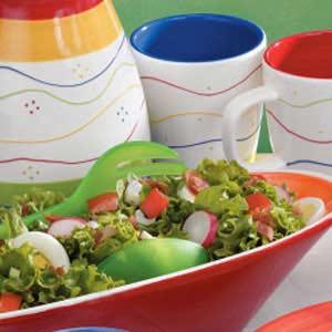 Garden Lettuce Salad Recipe