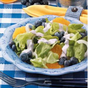 Blueberry-Orange Onion Salad Recipe