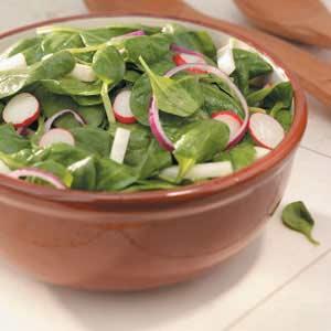Jicama-Radish Spinach Salad Recipe