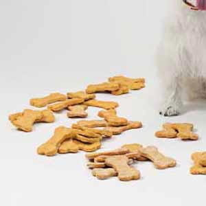 Beefy Dog Treats Recipe