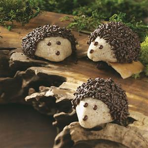 Chocolate-Pecan Hedgehog Cookies Recipe