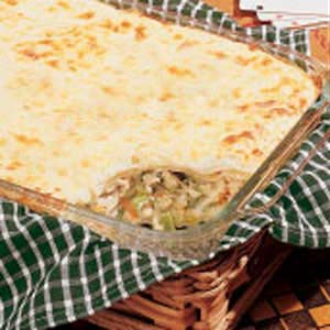 Chicken Broccoli Lasagna Recipe